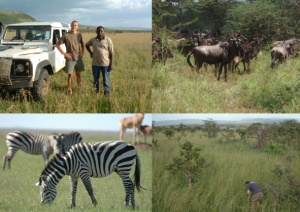 Dr. Anderson in Africa picture collage